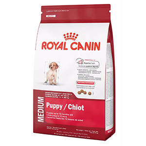 royal canin medium junior zooplies. Black Bedroom Furniture Sets. Home Design Ideas